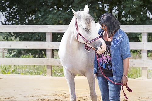 wir_coachen_dich_pferdegestütztes_coaching_mit_pferden_antje_mueller_Einzelcoaching_silver_Rock_Ranch_Elterlein