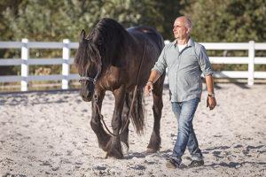 wir_coachen_dich_pferdegestütztes_coaching_mit_pferden_antje_müller_Tageskurs_Führungskräfte