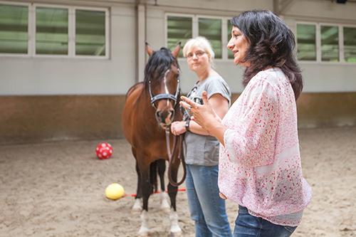 Pferdegstützte Coachings, Führungskräfte, Unternehmer, Unternehmenscoaching, BVMW, Dresden