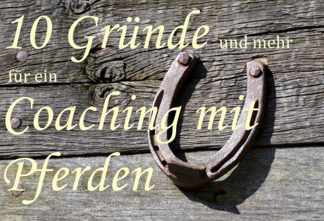 Pferdecoaching, PferdegestütztesCoaching, wircoachendich, Führungskräfte, Kommunikation, Wirkung