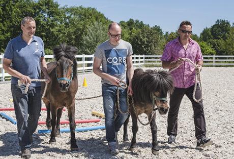 Pferdegestütztes Coaching mit Führungskräften und Antje Müller