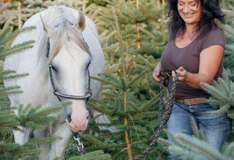 Pferdegestütztes Coaching mit Führungskräften und Horse Assisted Coach Antje Müller
