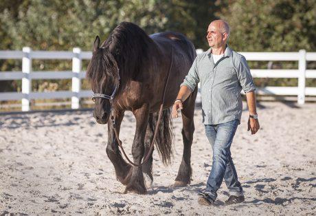 Wir coachen dich - Pferdegestütztes Coaching mit Pferden mit dem Pferdecoach Antje Müller auf dem Friesenhof Altlindenau Radebeul.