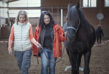 Wir coachen dich pferdegestütztes Coaching mit Pferden Pferdecoach Antje Müller