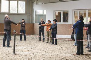 Antje-Müller-Pferdegestütztes-Coaching-mit-Pferden-Schnupperkurs-Markus-Boeker-wir-coachen-dich-Horse-assisted-coach
