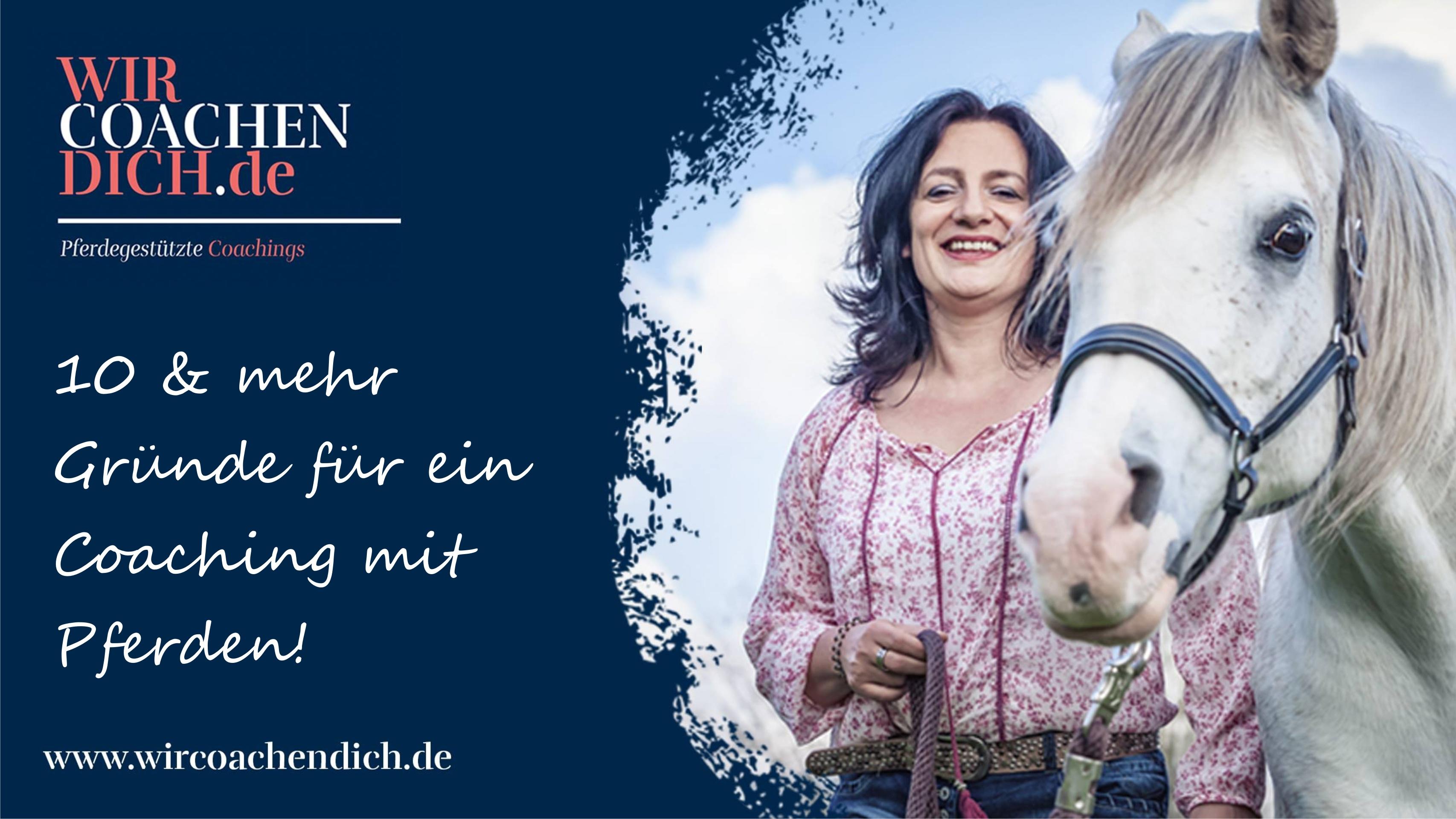 PferdegestütztesCoaching, Führung, Führungskräfte, Dresden, Deutschlandweit, Teamtraining, Kommunikation