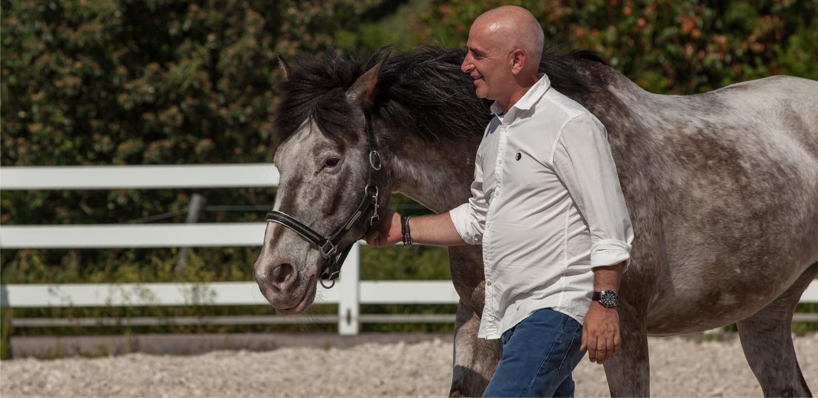 Pferde als Coachingpartner