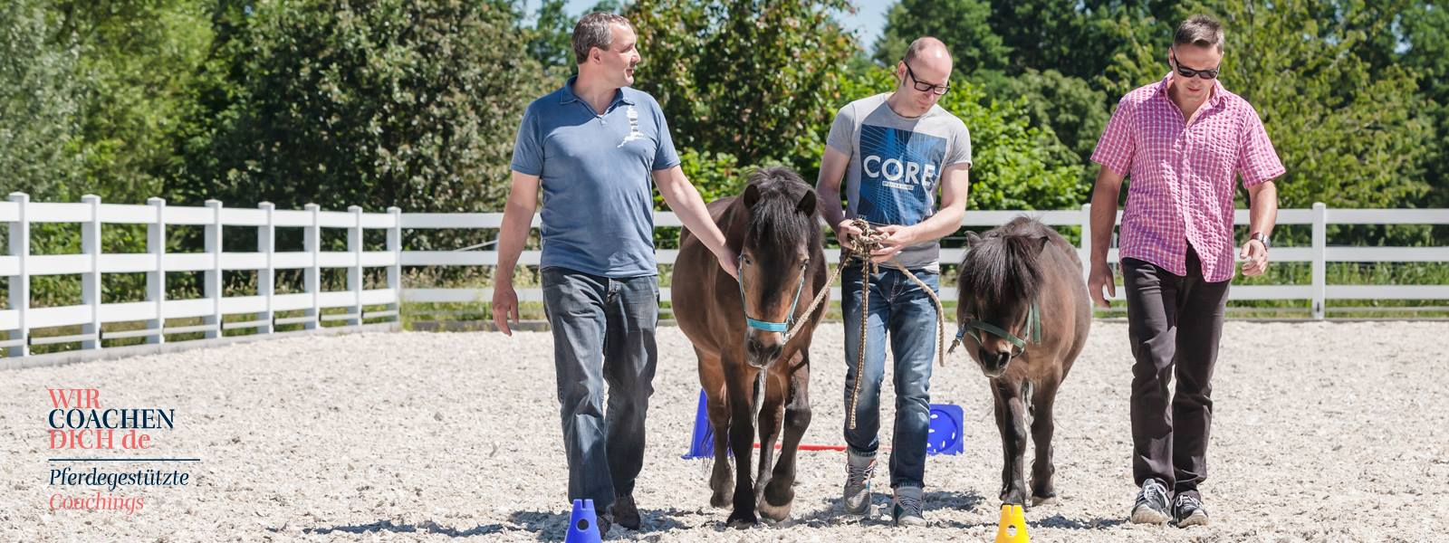PferdegestütztesCoaching, Führung, Führungskräfte, Dresden, Radebeul, Teamtraining, Kommunikation