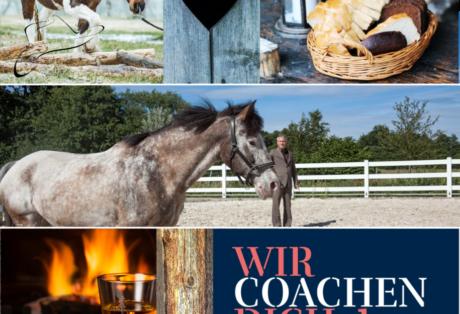Exklusives Unternehmer*innen Coaching